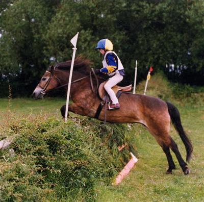 The Exmoor Pony is Fun