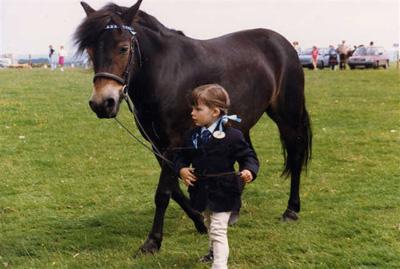 The Exmoor Pony is Trustworthy